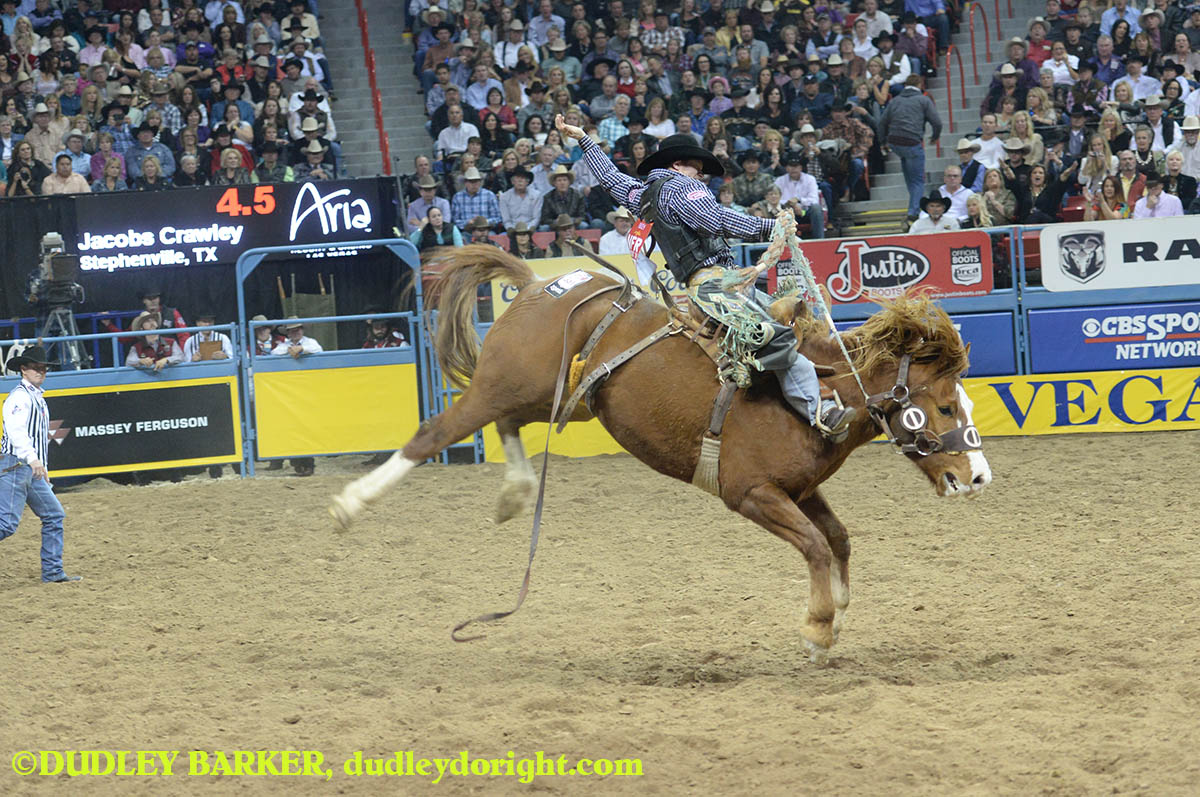 Jacobs Crawley, round three, 2014 WNFR, Dec. 6, 2014 || Photo by DUDLEY BARKER, dudleydoright.com
