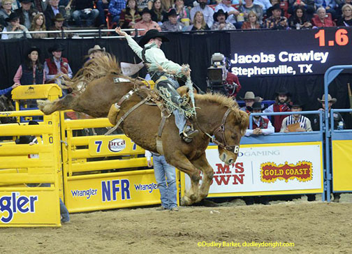 Rodeo In Canada World Class Cowboys Head North Of The