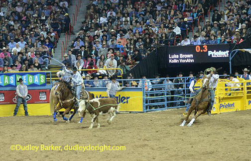 Luke Brown at the 2014 NFR ||Courtesy Dudley Barker, dudleydoright.com