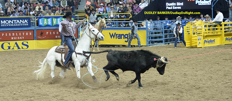 Team Ropers Macy Williams Cash Three Times In Busy Rodeo