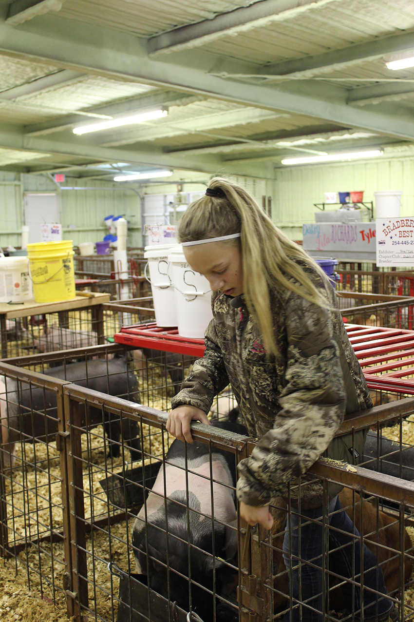 Stock Show (day 2) Juhl Sorrels with her and her sister_s pigs