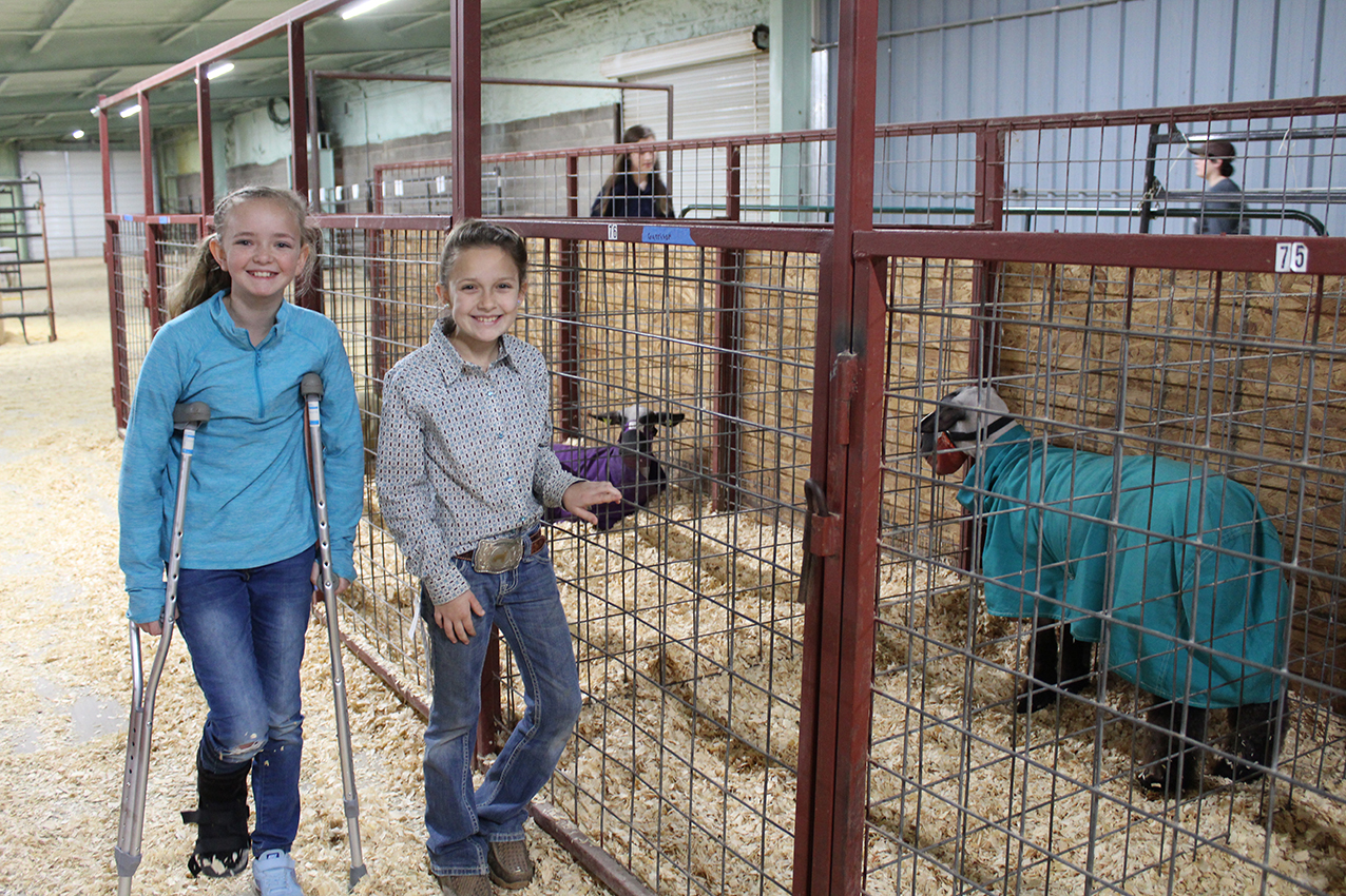 Stock Show (day 2) Keylee Porter and Emmi Garrison with Emmi_s lamb, Jumper